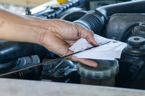 close-up-hands-of-the-mechanic-doing-car-service-and-maintenance-oil-and-fuel-filter-checking_t20_mLoeyd